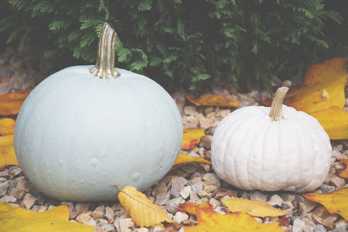 DIY: Painted Pumpkins